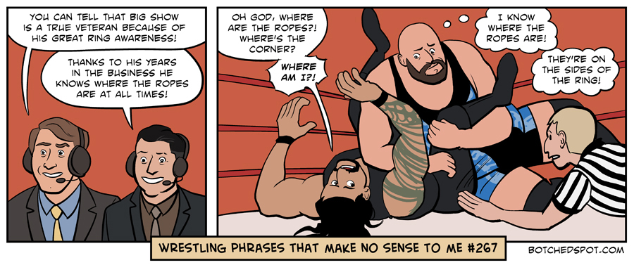 Wrestling Phrases That Make No Sense to Me